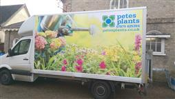 full colour van graphics norfolk